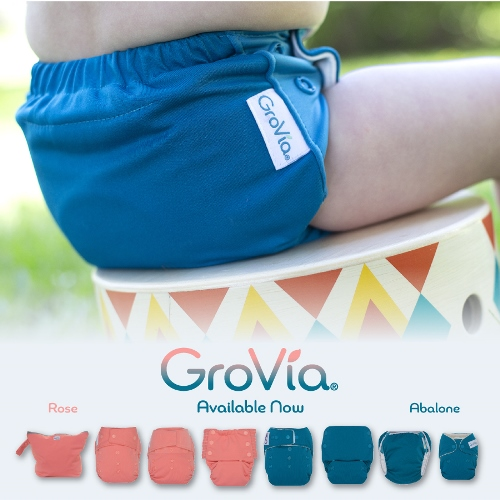 grovia cloth diaper - roas and abalone