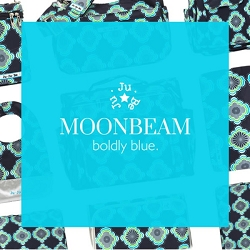 ju ju be diaper bag - moonbeam