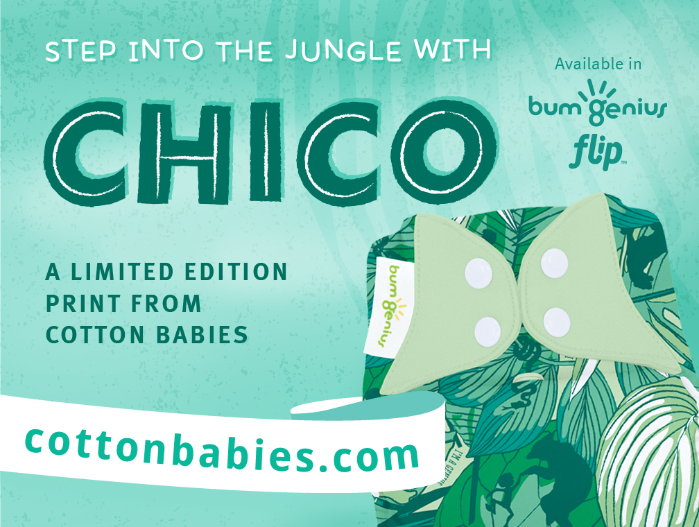 bumgenius new print - chico