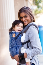 Tula Baby Carrier - Ripple