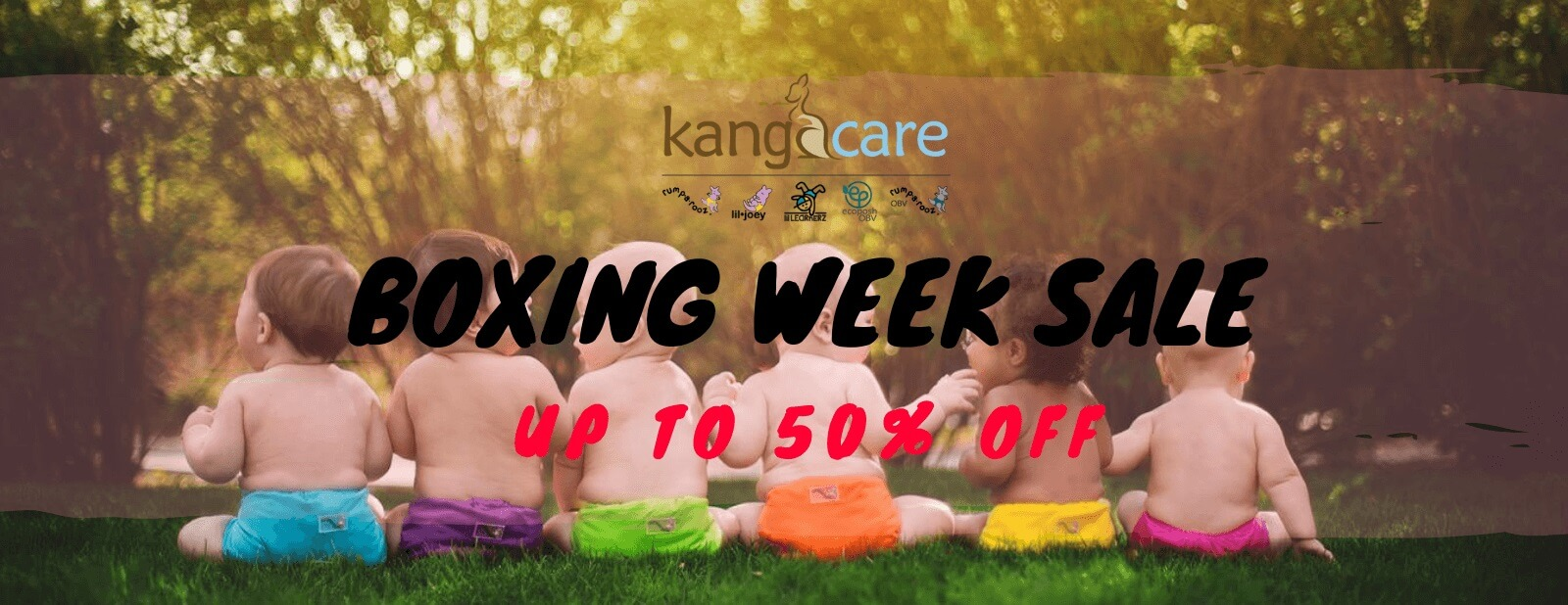 kangacare care bear cloth diapers boxing week sale