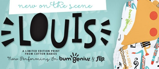 bumgenius new print - louis