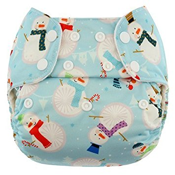 blueberry one size diaper - Frosty