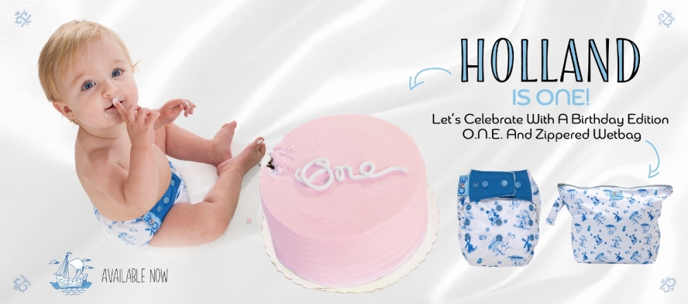 grovia cloth diapers - holland birthday