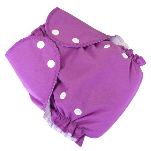 amp cloth diaper - sugar plum