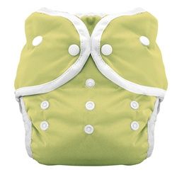 Thirsties Duo Cloth Diapers snap - honeydew