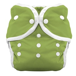Thirsties Duo Cloth Diapers snap - meadow