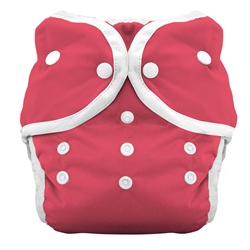 Thirsties Duo Cloth Diapers snap - rose