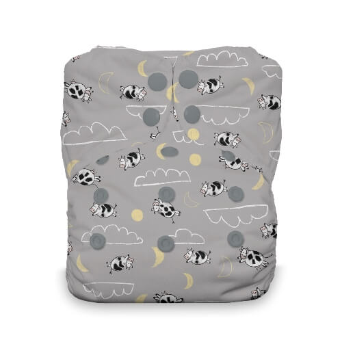 Thirsties One Size All in One Cloth Diaper - Snap -  Dreamscape
