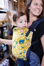 Tula Baby Carrier - Fable