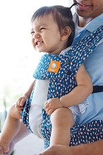 Tula Explore Baby Carrier - Coast Maya