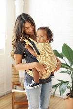 Tula Free-to-Grow Baby Carrier - Sunset Stripes